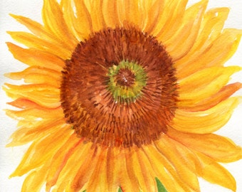 Sunflower watercolor painting original 8 x 10  Original watercolor sunflower, flower watercolor, sunflower decor, sunflower painting