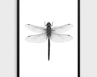 Dragonfly Print | Dragonfly, Dragonfly Art, Dragonfly Poster, Minimalist Wall  Art, Black And White Art, Affiche Scandinave, Nordic Art