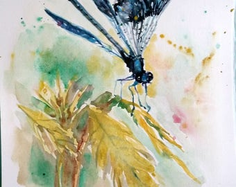Original Watercolor painting, Dragon Fly, 10x8inch, 1802098