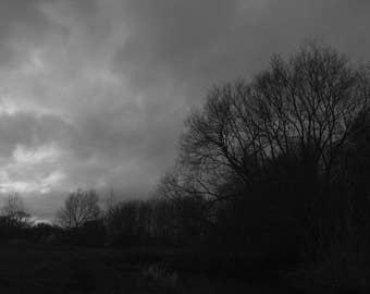 Grey and Dark