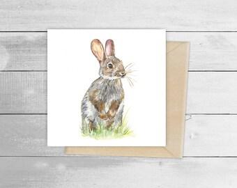 15cm x 15cm Wild Rabbit Greetings Card
