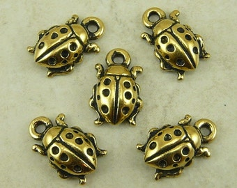 5 TierraCast Lady Bug Insect Charms > Garden Good Luck VW - 22kt Gold Plated Lead Free Pewter - I ship Internationally 2124