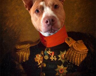 Pit Bull Art Dog Artwork General Dog Pet Portrait Dog Print Animal Photography Gift for Dog Lover Pet Lover Print - General Guthrie