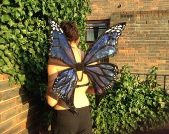 Blue Monarch Butterfly Adult Butterfly Wings.