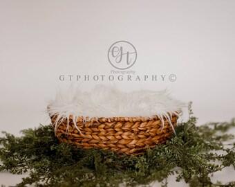 Newborn Digital Backdrop, Basket Digital Backdrop, Digital Backdrop with Vine