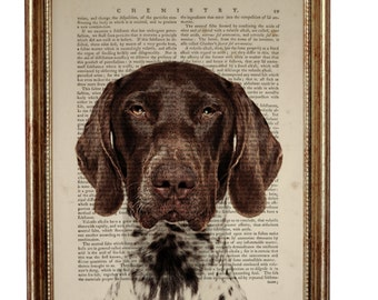 Patrick's Day Decor, GSP Gifts, GSP Art, GSP Dog, German Shorthaired Pointer Dog Art Print Upcycled Dictionary Book Page Gift For Dog Lover