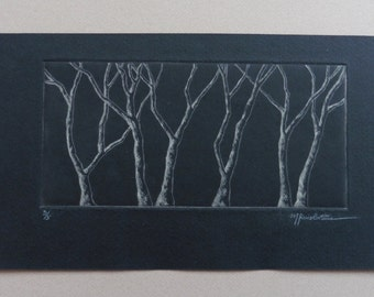 The Trees. ENGRAVING. ETCHING. CHALCOGRAPHY. Engraving art. Drypoint. Tree etching. Tree engraving. Forest engraving. Tree. Intaglio. Forest