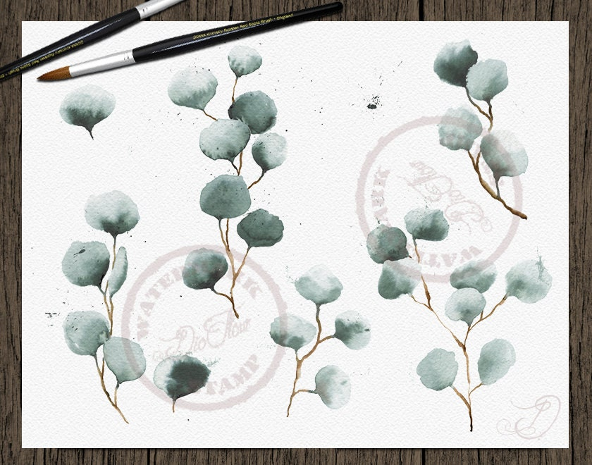 Watercolor Eucalyptus Silver Dollar Clipart Frame Greenery Frames ...