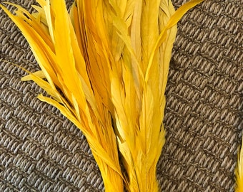 Long coque feathers yellow