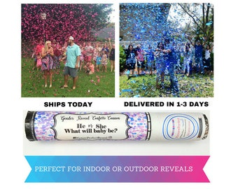 SALE! SHIPS TODAY! | Gender Reveal Confetti Cannon | Gender Reveal Confetti Popper | Confetti Cannon | Gender Reveal Ideas| Gender Reveal |
