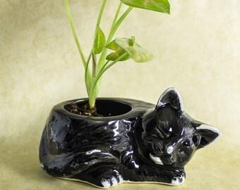 Tuxedo Kitty planter, black white modern planter ceramic succulent planter, handmade pottery planter, plant pot, cat lover gift gardening