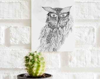 Owl Illustration Postcard