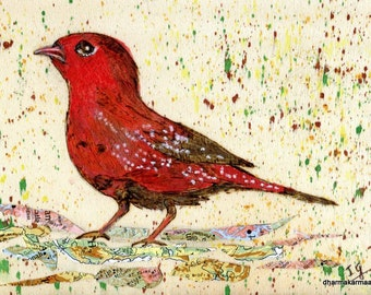 Woodburned Watercolor Red Finch