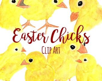 Hand Painted Watercolor Easter Chicks ClipArt, INSTANT DOWNLOAD, Baby Chicks Clipart, Chicken Clipart, Watercolor Yellow Baby Chicks Clipart