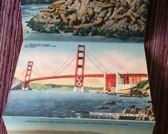 San Francisco Postcard,San Francisco Ephemera,San Francisco Illustrated,San Francisco Landmarks,San Francisco Memorabilia,San Francisco Card