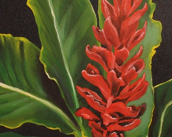 """Red Ginger  11""""x14"""" fine art archival print wirh 16""""x20"""" double matted in white with black trim."""