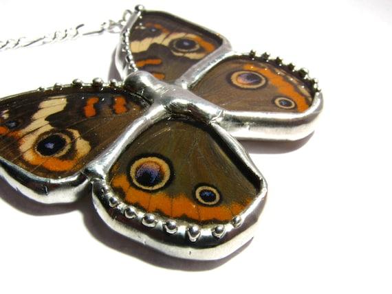 Butterfly Necklace - Junonia Coenia - Real Handmade Buckeye Butterfly Wing