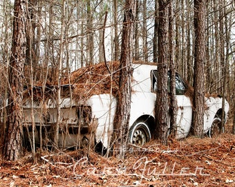 1967 Ford Mustang Penned in by Trees Photograph