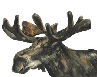 Moose watercolor print, Moose watercolor painting, Moose art, Moose painting, Moose nursery art