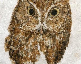 Eastern Screech Owl original sand painting 8x10 owl painting bird native North American wildlife art sand art work owl painting 8 x 10