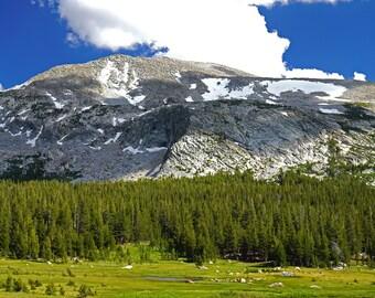 Landscape Photography Wall Canvas-Yosemite CA - Free Shipping