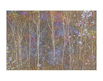 Arts & Crafts Style Floral Art Print of Bare Trees On the Edge of a Forest