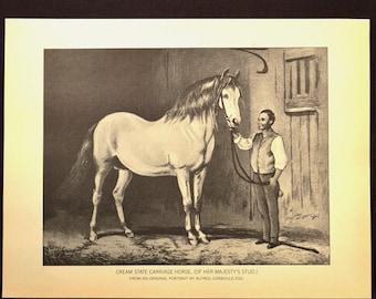 Horse Wall Art Horse Print Horse Wall Decor Book Page Black White