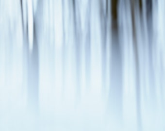 Abstract winter tree landscape photography. Large snow photograph art print. Modern fine art nature photo. Foggy forest art for office.