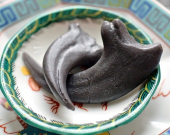 Dino Raptor Claw Soap - A  Fossil Replica Soap - Treasures from the Past
