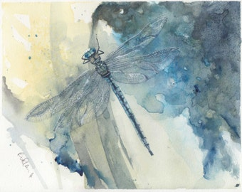 DRAGONFLY mounted watercolour print by Ruth Nolan