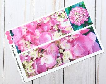 hydrangea planner stickers | hydrangea photo stickers | full box planner stickers | pink flower stickers | vinyl matte stickers |
