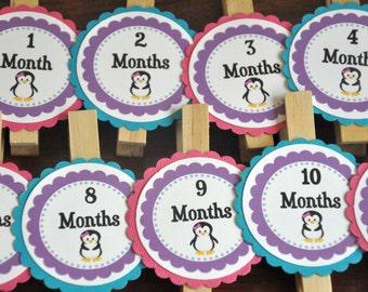 Penguin Photo Clips. Photo Clips. Penguin. Set of 13. Newborn-12 Months. Choose Boy or Girl