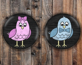 Cute bird boy and girl gender reveal pins.  Pink and blue.