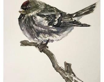 Bird - original watercolor painting