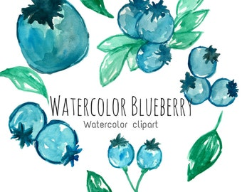 Watercolor blue berries - Watercolor fruit - Commercial Use - Food Clip Art - Blue Berry clip art