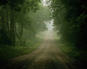 Foggy Road Fine Art Photography Nature Woodland Fog Mist Country Green Brown Grey Tunnel Rustic Home Decor Wall Art