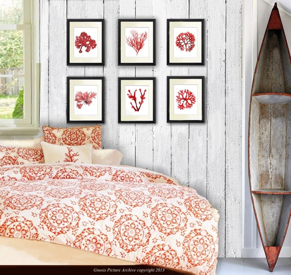 Coastal Wall Decor Part - 39: Coastal Wall Decor Coral Red Seaweed Art Prints Set Of 6