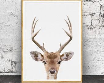 Deer Print, Deer Head and Antlers, Woodland Animals, Woodlands Decor, Woodlands Nursery, Nursery Decor, Woodlands Printable,  Kids Wall Art