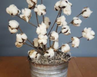 Cotton Arrangement in Rustic Tin, Farmhouse, Fall Decor