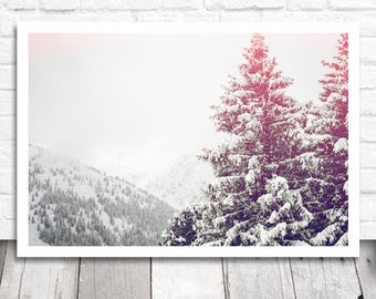 Snow Tree Print, Fir Tree Print, Nature Print, Digital Print, Digital Photo Download, Printable Photo, Winter Photography, Landscape Photo