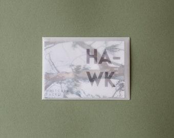 HAWK Postcard Pack of 5