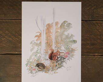 A4 Woodland Print. Squirrel and Hedgehog Forest Illustration