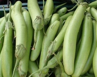 Eggplant Seeds 50 Louisiana Long Green Seeds Egg Plant 100 Days