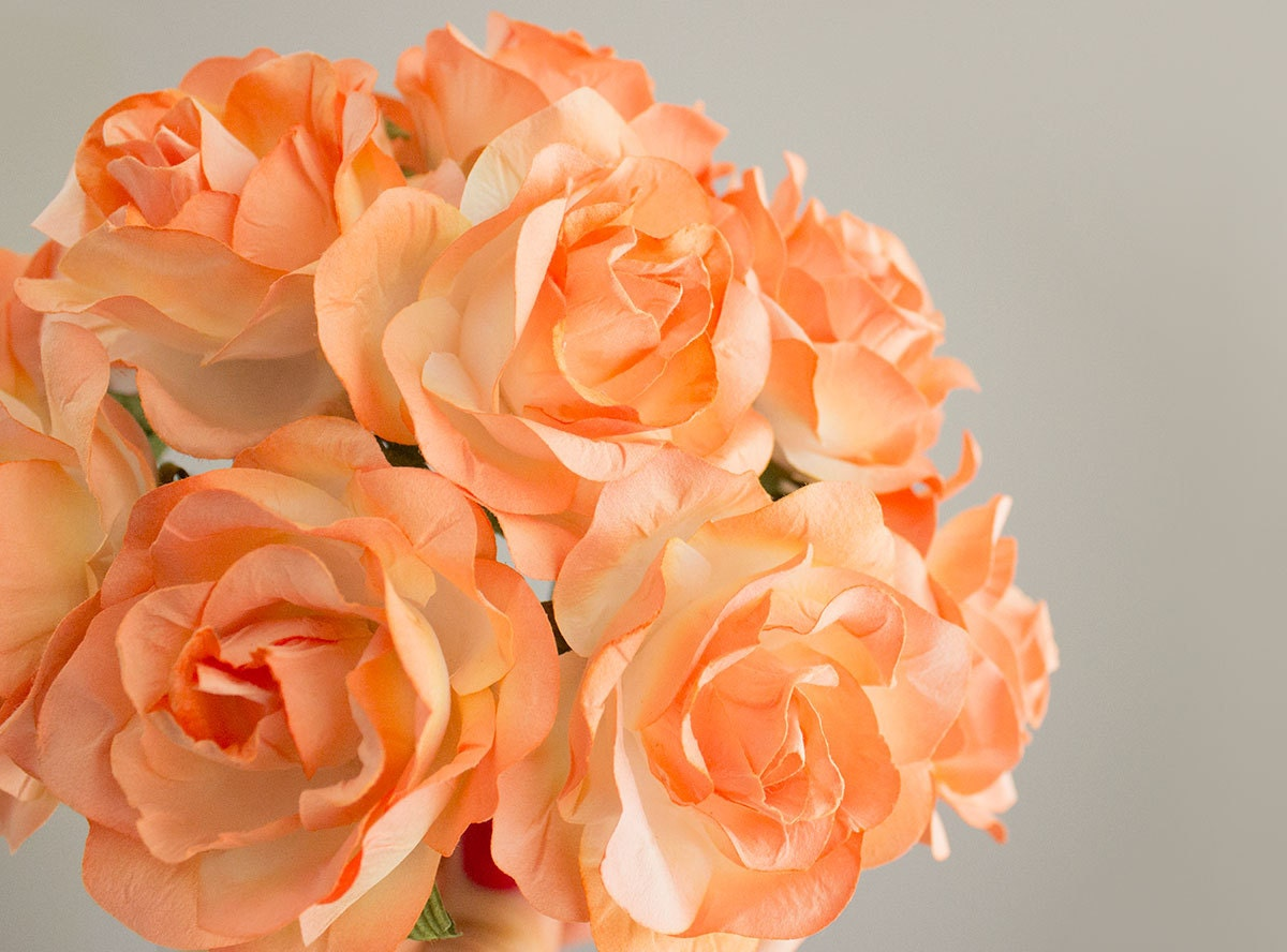 New Color 12 Paper Flowers One Dozen Coral Peach Roses Artificial