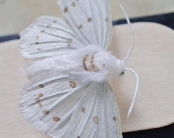 White Moth / Faux Taxidermy / Paper Taxidermy / Moth Art / Moth Faux Taxidermy / Paper Wall Art / Moth Wall Art / Fake Taxidermy /Paper Moth