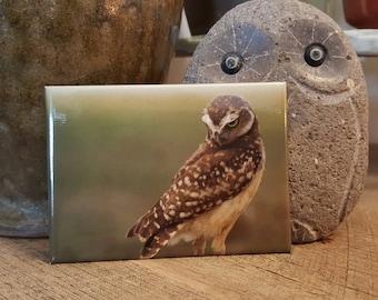 Burrowing Owl Magnet