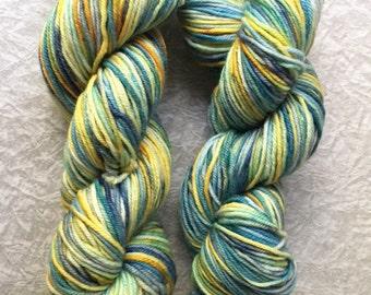 Variegated, Hand dyed yarn, Merino yarn, 100 grams, Macaw, hand dyed, yarn, semi solid yarn