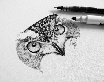 Owl drawing on canvas 30 x 30 cm