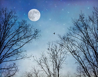 Moon Photograph, Canvas Wrap or Print, Full Moon, Night Sky, Starry Night, Stars, Celestial, Black Birds, Dreamy, Twilight  - Moon Dreams
