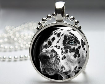 Dalmatian Dog Pendant. Silver Pendant. Round Pendant Necklace with Silver Ball or Snake Chain Necklace or Key Ring